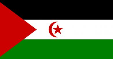 Sahara Demokratik Arap Cumhuriyeti Bayrağı